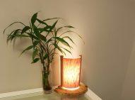 beech lamp - lit